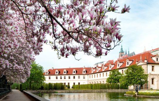 (Čeština) Výstava 100 let hravé architektury ve Valdštejnské zahradě v Praze od 28. 5. - 17. 6. 2019